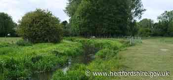 Improvements planned for a local chalk river - Hertfordshire County Council