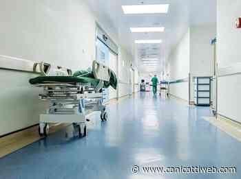 Musumeci destina 85 mln agli ospedali: 3,7 milioni ad Agrigento - Canicatti Web Notizie