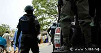 Police arrest 2 for allegedly raping minors in Adamawa - Pulse Nigeria