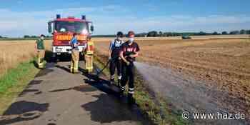 Seelze: Feuerwehren löschen brennendes Feld in Lathwehren - Hannoversche Allgemeine