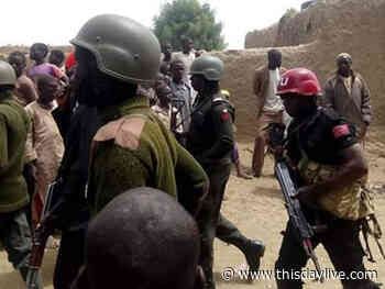 Troops Neutralise 80 Bandits in Katsina, Zamfara, Sokoto - THISDAY Newspapers