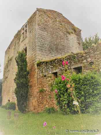 Visite guidée du vieux centre et du château Vieille ville de Podensac Podensac - Unidivers