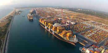 Ex lavoratori Gioia Tauro Port Agency: grande apertura del Governo per la soluzione - Strill.it