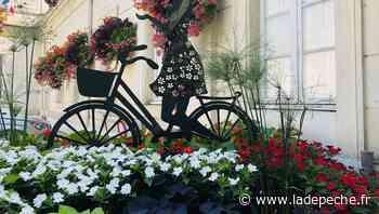Castelnaudary. Les dames de fer - ladepeche.fr