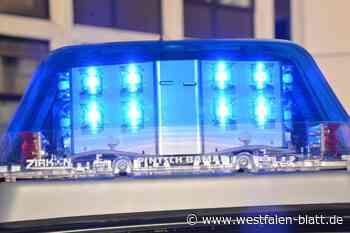 Polizei schnappt Autodieb nach Verfolgungsfahrt - Westfalen-Blatt