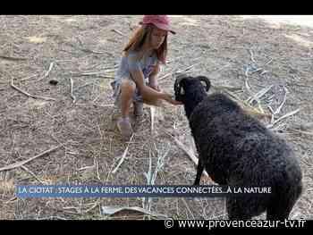 La Ciotat : Stage à la ferme, des vacances connectées…à la nature | PROVENCE AZUR - PROVENCE AZUR