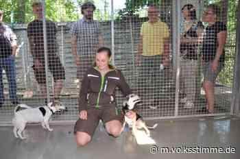 Guter Tag für Tierschutz in Halberstadt | Volksstimme.de - Volksstimme