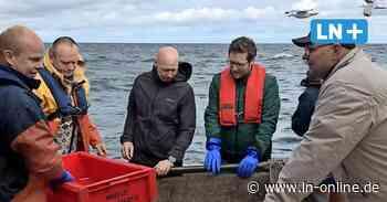 Fehmarn: Minister Albrecht hört sich die Sorgen der Fischer an - Lübecker Nachrichten