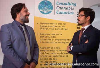 Tenerife puede convertirse en el paraíso del cannabis medicinal | Canarias En Red - Diario de Avisos