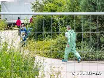 Weiterer Corona-Ausbruch in Mamming: Behörden prüfen weitere Maßnahmen - idowa
