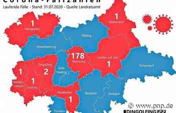 Grafik: So sind die Corona-Fälle im Kreis Dingolfing-Landau verteilt - Passauer Neue Presse