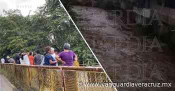 (Video) ¡Niña de 8 años cae al río en Coatepec! - Vanguardia de Veracruz
