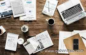 Facteurs menant Mondial Verre à vitre écoénergétique Marche (2020-2029) || Saint-Gobain SA, Nippon Sheet Glass Co. Ltd., Asahi Glass Co. Ltd. - Gabon Flash
