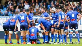 Top 14 - Castres : la barre des 4000 abonnés franchie - Rugbyrama.fr
