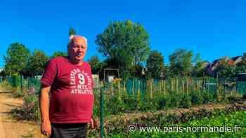À Val-de-Reuil, dans l'Eure, les Jardins familiaux sont ouverts été comme hiver - Paris-Normandie