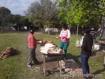 Productoras fabricaron almidón con mandioca traída de San Miguel - CorrientesHoy.com