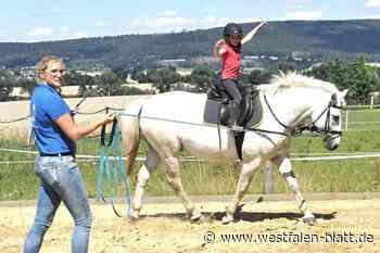 Familie von Kanne bietet auf Gut Breitenhaupt in Steinheim Reiterferien an: Sicherheit auf dem Pferderücken üben - Westfalen-Blatt