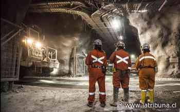 Sector minero frena caída económica del país - Diario La Tribuna