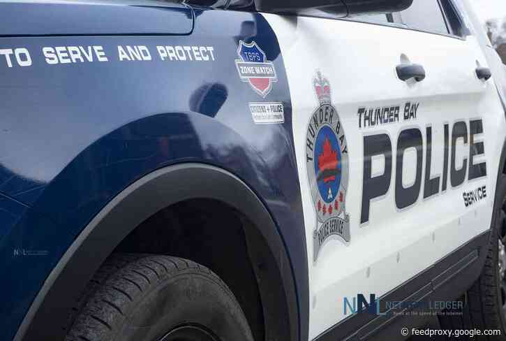 """Not One More Death"" Plans Unauthorized Tree Planting at Thunder Bay Police Headquarters"