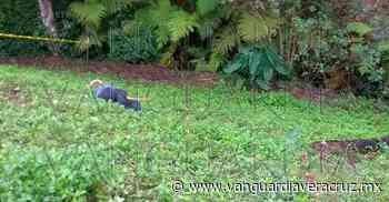 Asesinan a sujeto en Misantla, Veracruz - Vanguardia de Veracruz