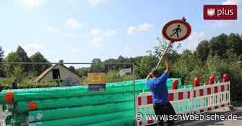 Waldsee im August 2019: Diskussion um Zirkus und Verwarnungsgeld - Schwäbische