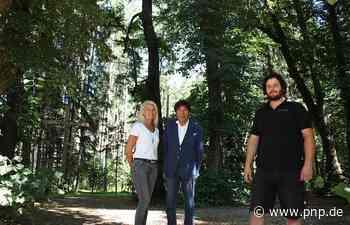 Zum Jahrestag der Eröffnung: Der Lichtwald wird leuchten - Passauer Neue Presse