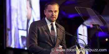 Leonardo DiCaprio says animals are 'worth more alive', calls for wildlife trade ban - Totally Vegan Buzz