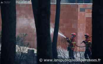 En images. Incendie de Chiberta à Anglet : la lutte des sapeurs-pompiers ce vendredi - La République des Pyrénées