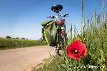 A la découverte de l'eau…à vélo! samedi 24 octobre 2020 - Unidivers