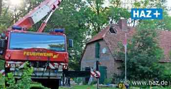 Pferd in Keller gestürzt: Feuerwehr Hannover hilft bei Rettung in Celle - Hannoversche Allgemeine