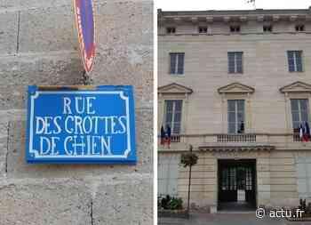 Val-d'Oise. Déjections canines: Magny-en-Vexin sort les crocs - La Gazette du Val d'Oise - L'Echo Régional