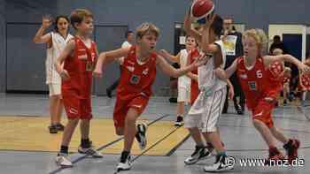 Fast alle Basketball-Teams des TuS Bramsche wieder im Training - Neue Osnabrücker Zeitung