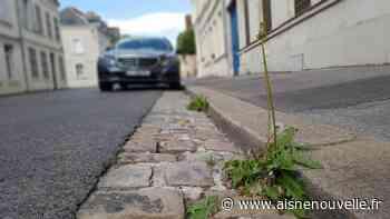 Qui doit désherber quoi à Saint-Quentin? - L'Aisne Nouvelle