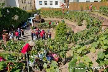 Visite libre du Chemin des vignes Chemin des Vignes samedi 19 septembre 2020 - Unidivers