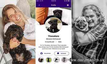 Australian entrepreneur launches new social network for PETS where animal lovers can share photos