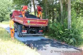 Wegebau fordert Forst und Gemeinden heraus - Freie Presse