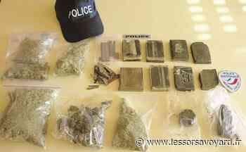 Drogue à Annecy: deux interpellations et du cannabis saisi dans une cave - lessorsavoyard.fr
