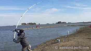 Pescamos en San Luis, Bolívar, una laguna que quisieron matar y está más viva que nunca - Weekend