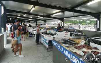 Landes : le marché aux poissons fait peau neuve à Capbreton - Sud Ouest