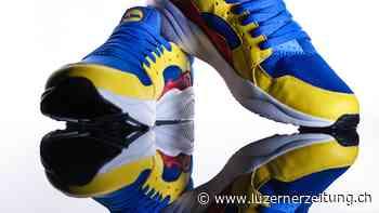Weshalb ein Billig-Sneaker von Lidl gerade für mehrere hundert Franken versteigert wird | Luzerner Zeitung - Luzerner Zeitung