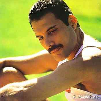 Queen: porque Freddie Mercury teve seus bens queimados após morrer - Whiplash.Net Rock e Heavy Metal