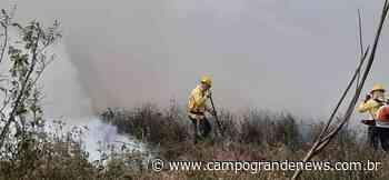 Com 821 mil hectares queimados, Pantanal tem pior julho dos últimos 22 anos - Campo Grande News
