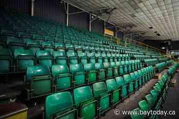 COVID-19: Coaches forced to rethink how they communicate with players in quiet venues