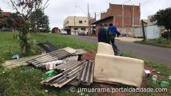 Umuarama terá boletins semanais para acompanhar evolução de casos da dengue - ® Portal da Cidade   Umuarama