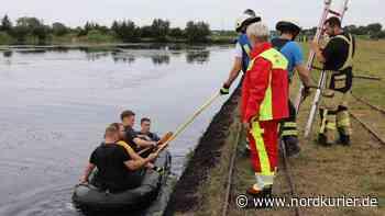 Spektakuläre Rettungsaktion: 18-Jähriger stundenlang im Torf bei Bad Doberan versunken   Nordkurier.de - Nordkurier