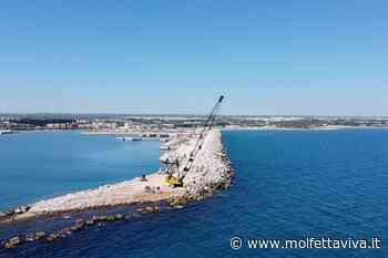 Nuovo porto di Molfetta, richiesti interventi per la sicurezza della navigazione - MolfettaViva