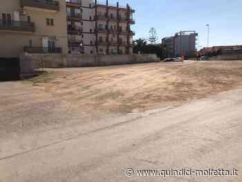 I residenti: l'amministrazione comunale di Molfetta abbandona il quartiere Arbusto - Quindici - Molfetta