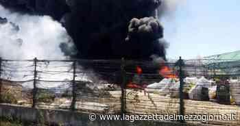Incendio divampa in una serra tra Terlizzi e Molfetta: il fumo si vede da Bari - La Gazzetta del Mezzogiorno