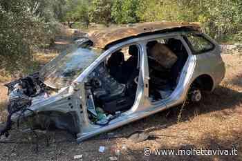 Auto rubate e cannibalizzate nascoste tra gli uliveti di Molfetta - MolfettaViva