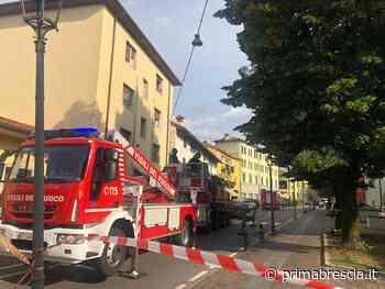 Pompieri in azione a Chiari per un albero pericolante - Prima Brescia
